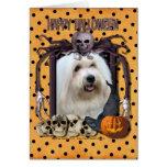 Pesadilla de Halloween - algodón de Tulear