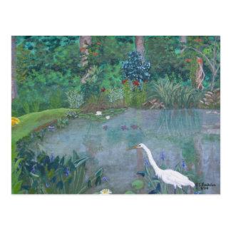 Pesca blanca del Egret en la charca Postales