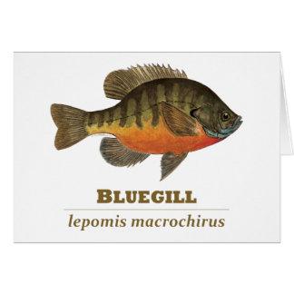 Pesca de la brema del Lepomis macrochirus Tarjeta De Felicitación