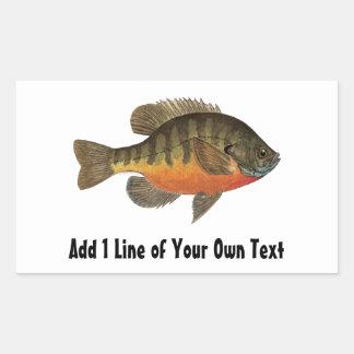 Pesca de la brema pegatina rectangular
