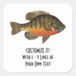 Pesca de la brema calcomanías cuadradas personalizadas