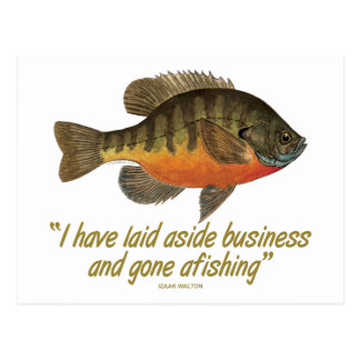 Pesca de la brema tarjetas postales