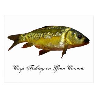Pesca de la carpa en Gran Canaria Tarjetas Postales