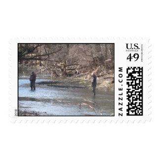 pesca de la corriente sello