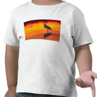 Pesca de la garza de gran azul (herodias del camisetas