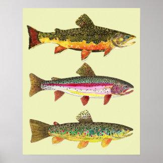 Pesca de la trucha impresiones