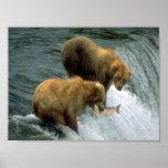 Pesca de los osos 1 poster