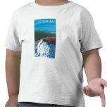 Pesca del oso en el río - Anchorage, Alaska Camisetas