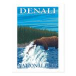 Pesca del oso en el río - parque nacional de postales