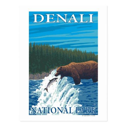 Pesca del oso en el río - parque nacional de tarjeta postal