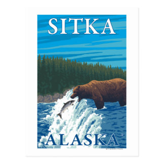 Pesca del oso en el río - Sitka Alaska Postales