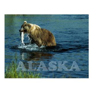 Pesca del oso marrón del Kodiak en Alaska Postales