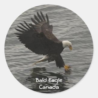 Pesca del pegatina del regalo de la fauna de Eagle