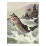 Pesca del pescador de los pescados de la trucha ar postales