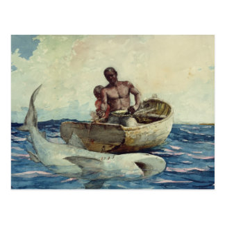 Pesca del tiburón, 1885 tarjeta postal