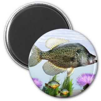 Pesca del tipo de pez imán redondo 5 cm