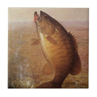 Pesca deportiva del vintage, lago bocazas bass de azulejo cuadrado pequeño