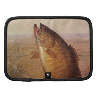 Pesca deportiva del vintage lago bocazas bass de planificadores