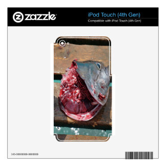 pesca deportiva iPod touch 4G skins