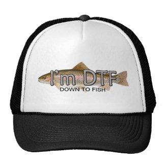 pesca divertida, im abajo pescar el gorra