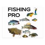 Pesca favorable tarjeta postal
