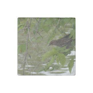 pesca negra de alas rojas del pájaro de una rama imán de piedra