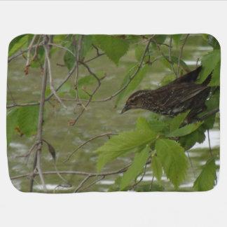 pesca negra de alas rojas del pájaro de una rama mantitas para bebé