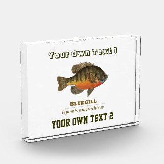 Pesca para el Lepomis macrochirus