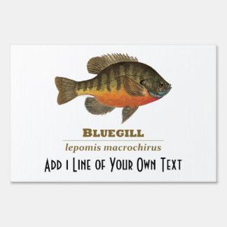 Pesca para el Lepomis macrochirus Señales