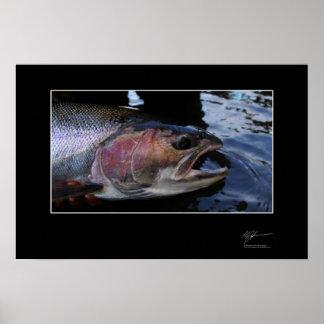 Pesca para la trucha arco iris adentro A.C. Poster