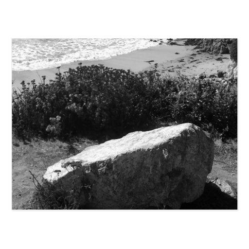 Pescadero State Beach - Postcard