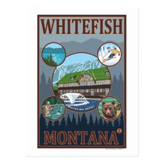 Pescado blanco, poster del viaje de MontanaScenic Tarjeta Postal