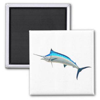 Pescado de la aguja azul imán cuadrado