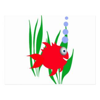 Pescado rojo tarjeta postal