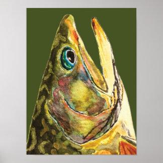 Pescador de la trucha de arroyo póster