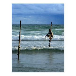 Pescador del palillo de Sri Lanka Tarjeta Postal