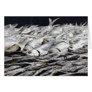 Pescados a secarse en Gambia Tarjeta De Felicitación