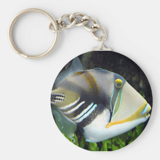 pescados acuáticos del disparador de las escenas llaveros