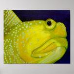 Pescados amarillos del gobio del vigilante posters