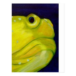 Pescados amarillos del gobio del vigilante tarjetas postales