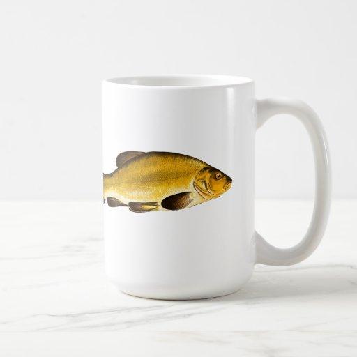 Pescados amarillos - TAZA