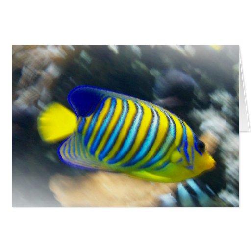 Pescados amarillos y azules brillantes tarjeton
