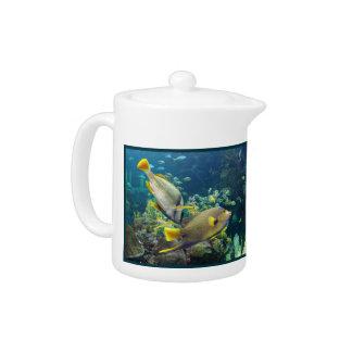 Pescados amarillos y azules coloridos hermosos del