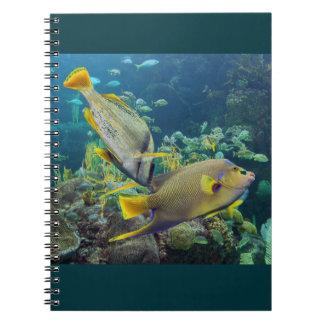 Pescados amarillos y azules coloridos hermosos del cuaderno