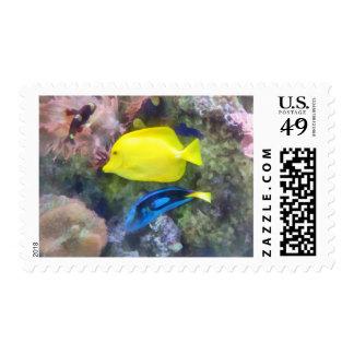 Pescados amarillos y azules de Tang Sello