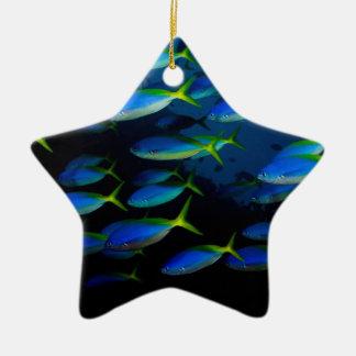 Pescados amarillos y blueback del fusil de chispa adorno navideño de cerámica en forma de estrella