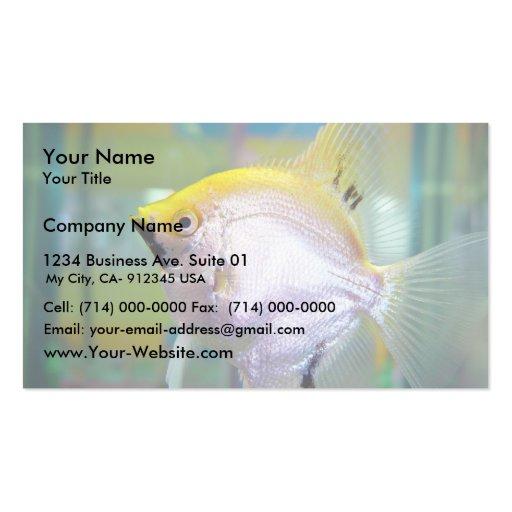 Pescados amarillos y de plata en el tanque tarjetas de visita