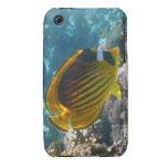 Pescados amarillos y negros del ángel iPhone 3 Case-Mate protectores