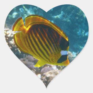 Pescados amarillos y negros del ángel pegatina en forma de corazón