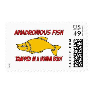 Pescados anádromos atrapados en un cuerpo humano